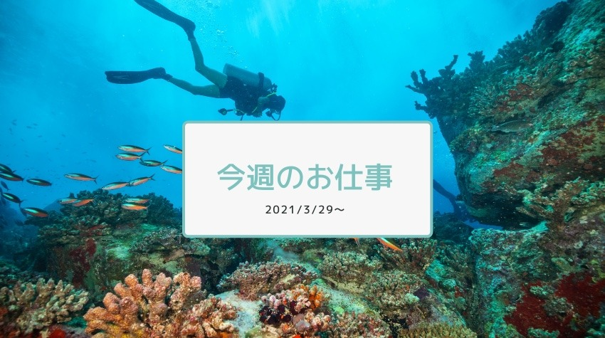 今週のお仕事2021/3/29〜2期終了!